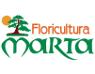 floricultura-marta